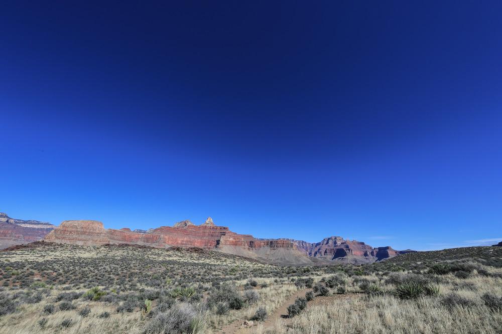 Grand Canyon-0795.JPG