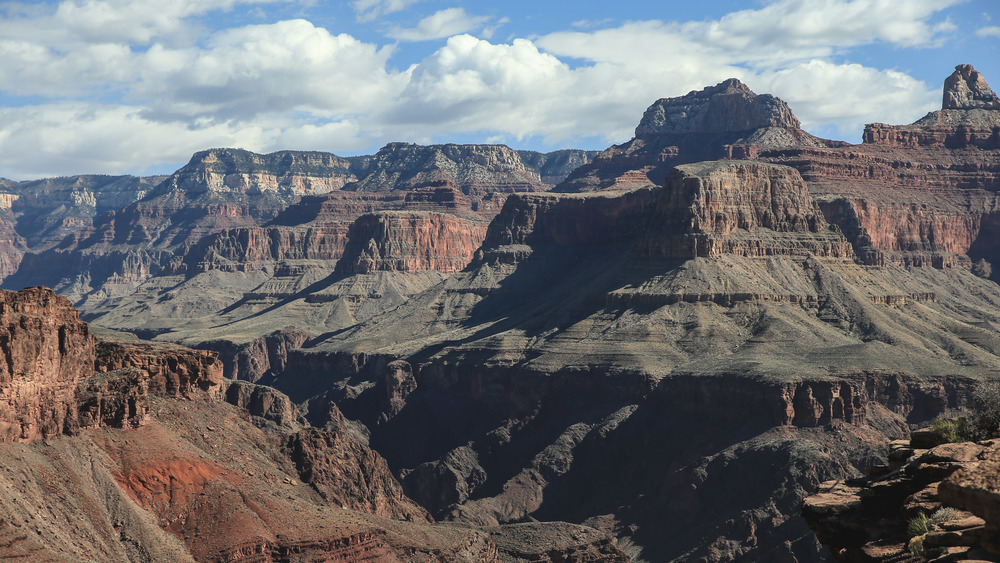 Grand Canyon-1954.JPG