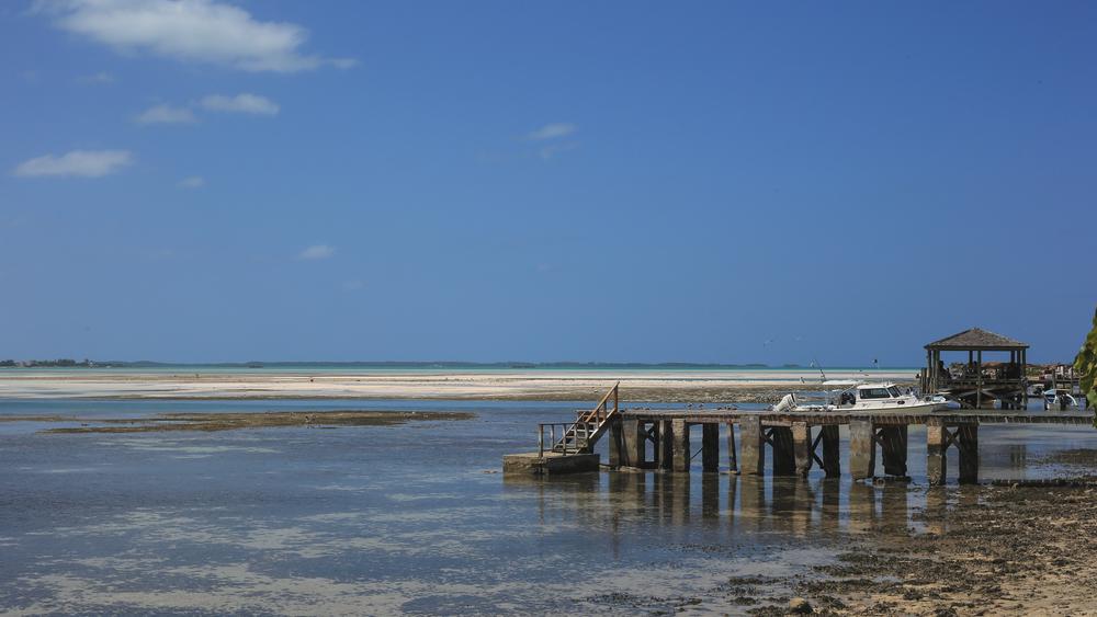 Harbor Island-5666.JPG