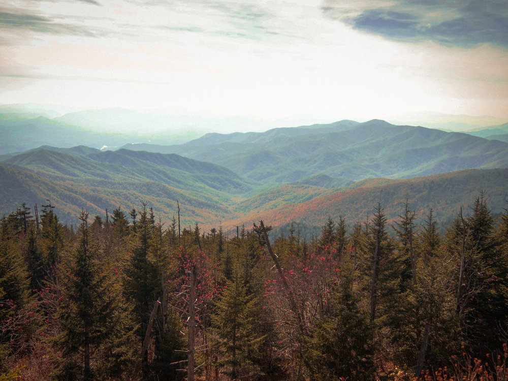 View from Clingman's Dome. Great Smoky Mountains National Park. North Carolina / Tennessee line.