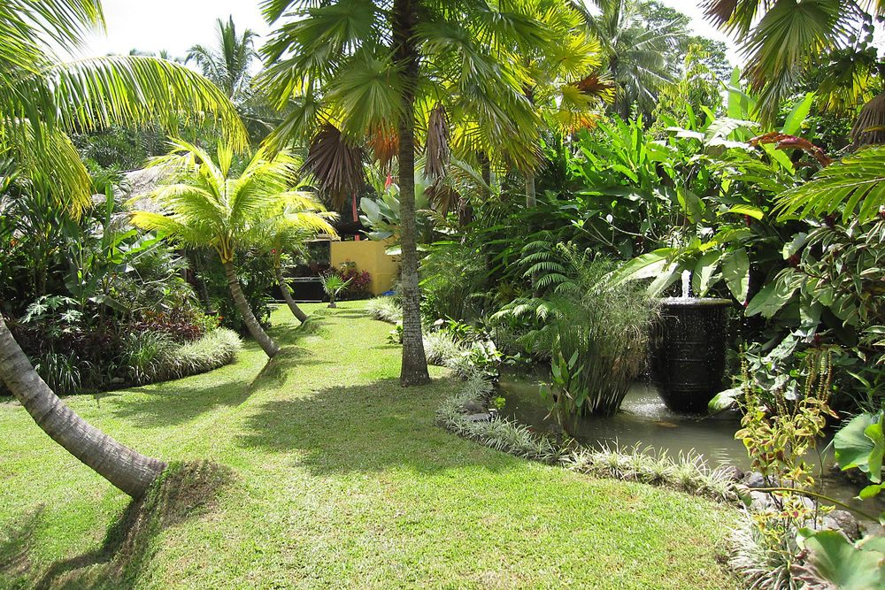 When you rent the estate you get exclusive use to wander and enjoy the extensive parkland tropical gardens, fountains, flowers and birds all to yourself.