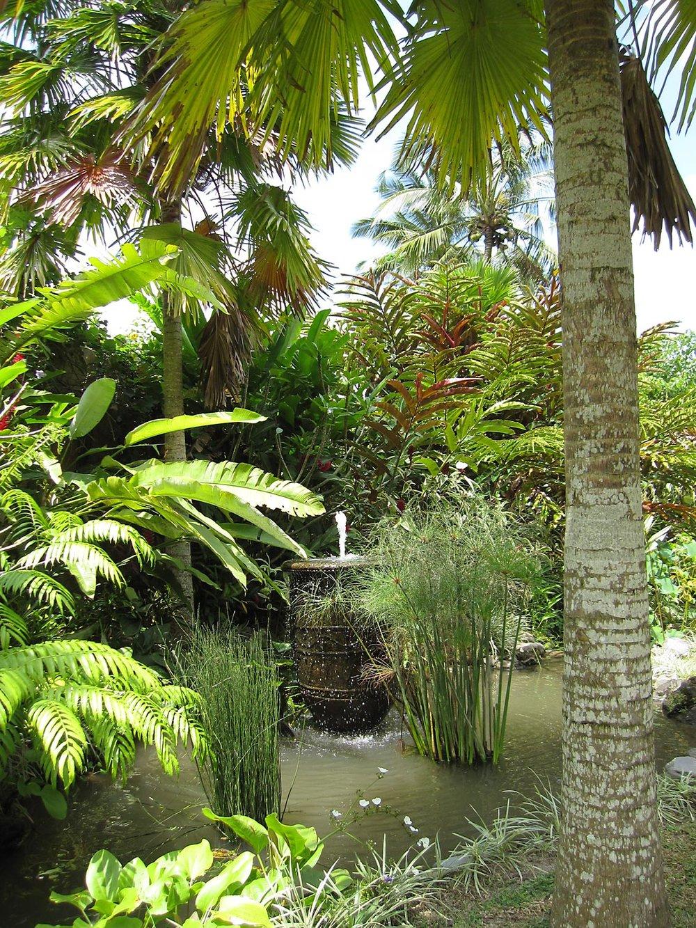 JdB-Garden10.jpg