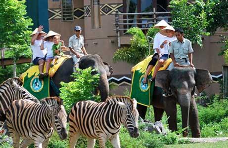bali-safari-marine.jpg
