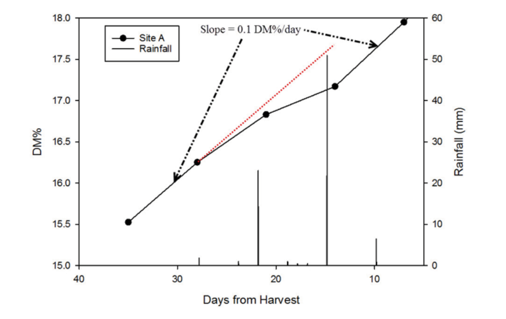 Figure 2. An example from 2015: Rainfall is shown on the right side, fruit DM on the left. The rainfall events of approximately 20 and 50 mm at 23 and 16 days before harvest caused a temporary decrease in the rate of DM accumulation.