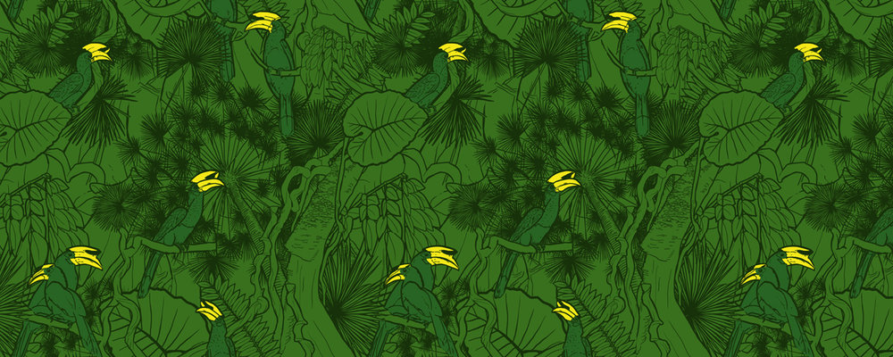 Hornbill-green.jpg