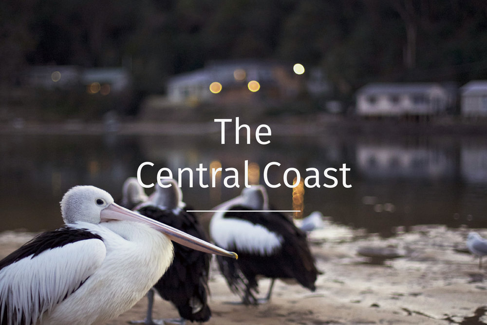 The central coast