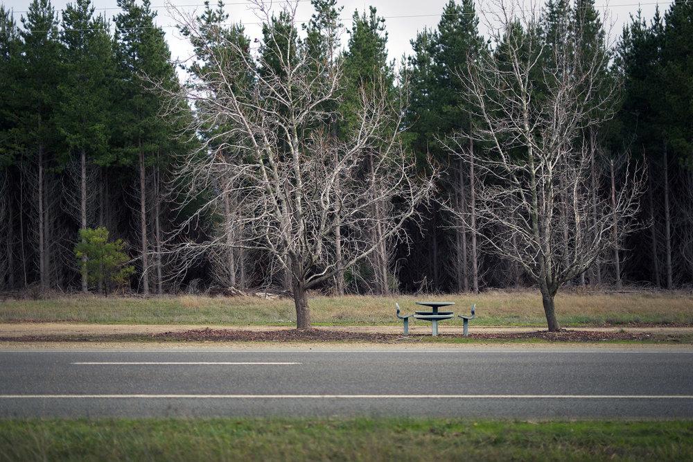 Y picnic bench 2.jpg