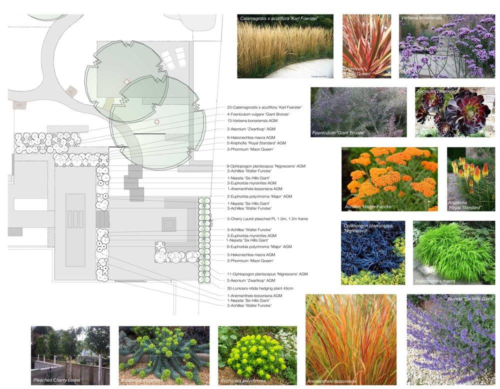 Plantingplanjpg.jpg
