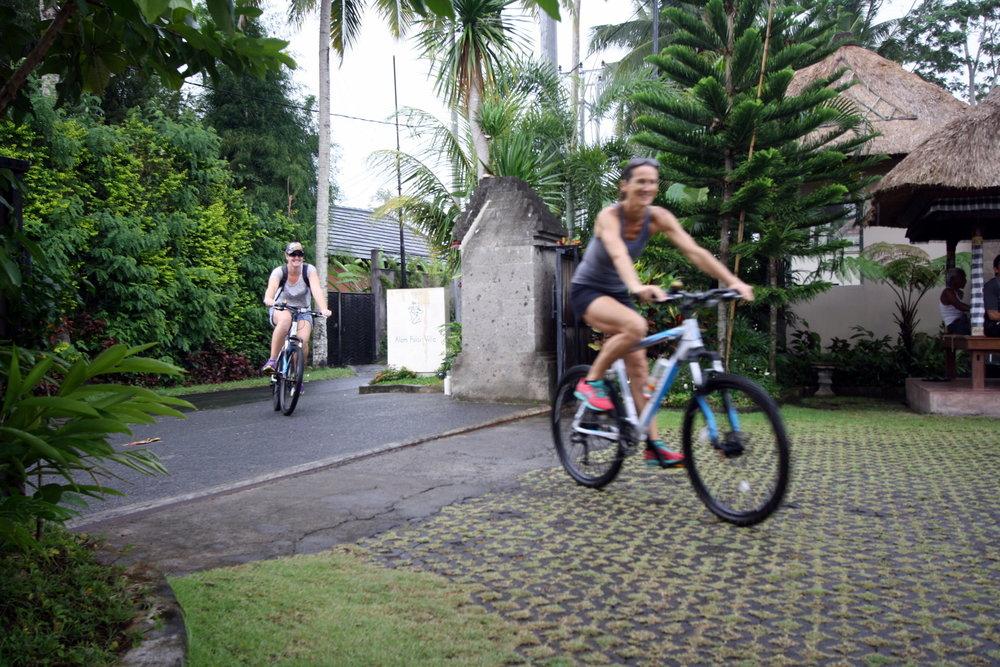 Bali 2015 2.jpg