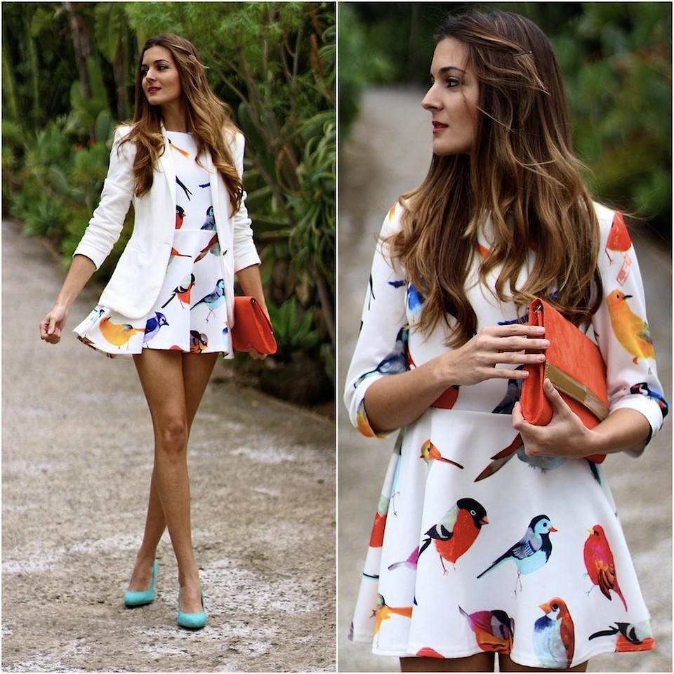 Fashion and Birds