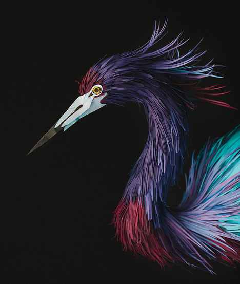 linleylondon: Colombian artist Diana Beltran Herrera has used paper to create these intricate models of tropical birds - http://buff.ly/1hfuSCh
