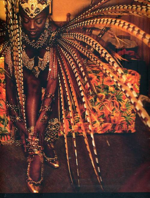 pangeasgarden :     the culture…