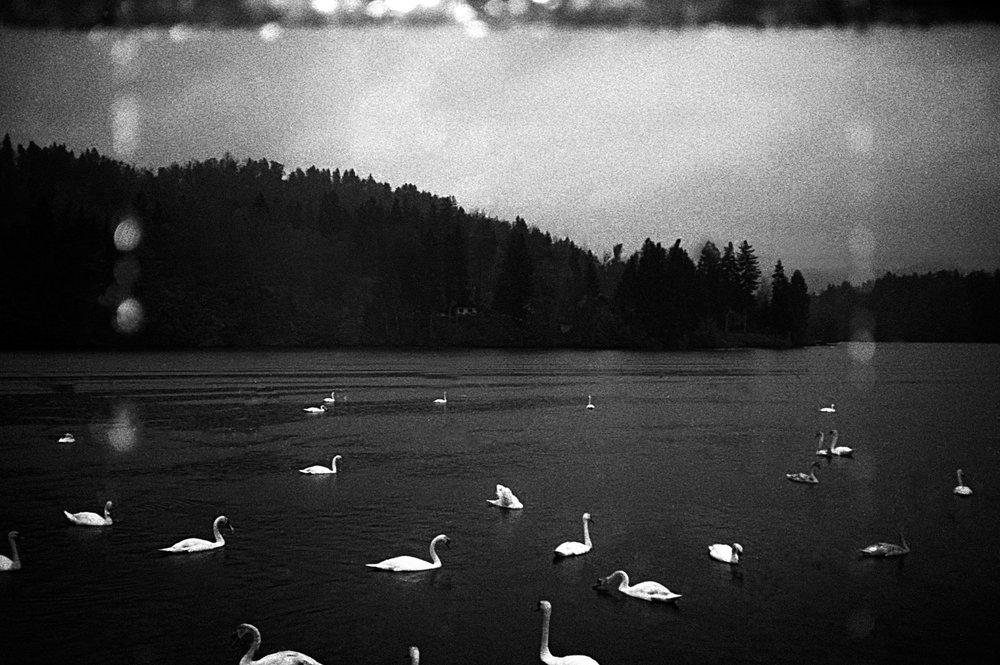 A poetic journey-7.jpg