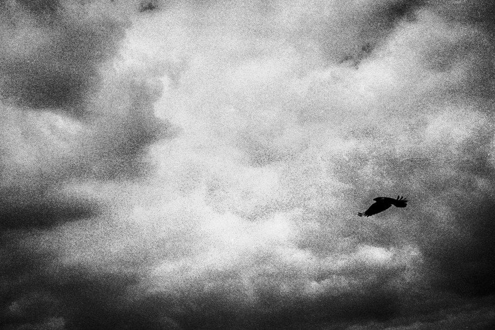 A poetic journey-22.jpg