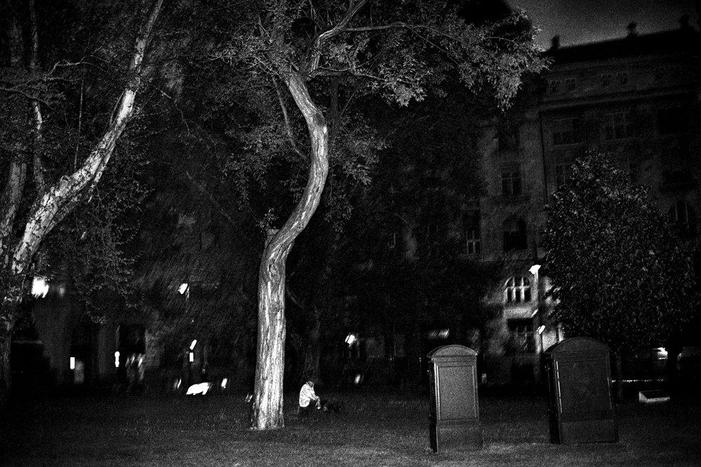 A poetic journey-4.jpg