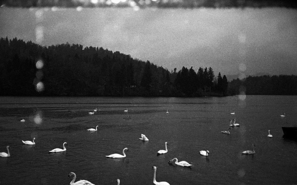 A poetic journey-54.jpg