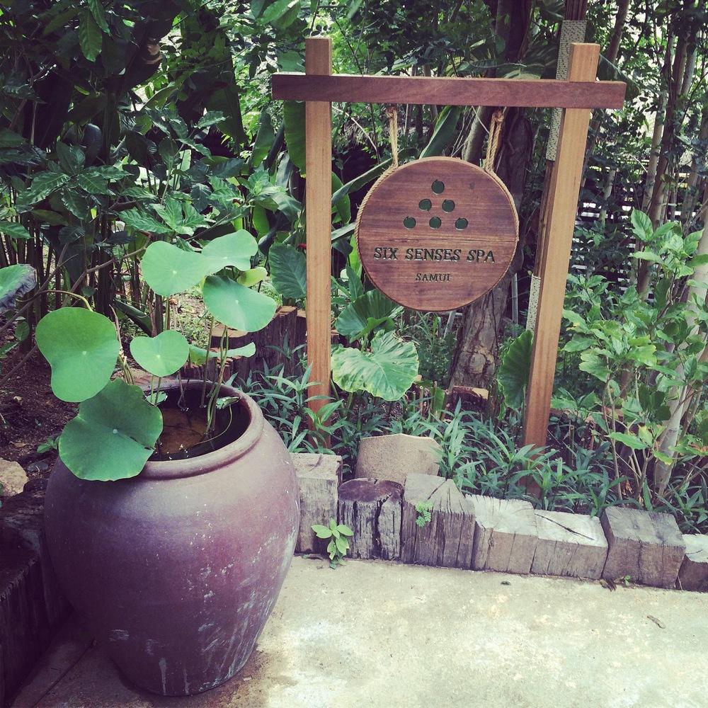 Ma Maison Zen. massage.ventabren.thailande1.JPG