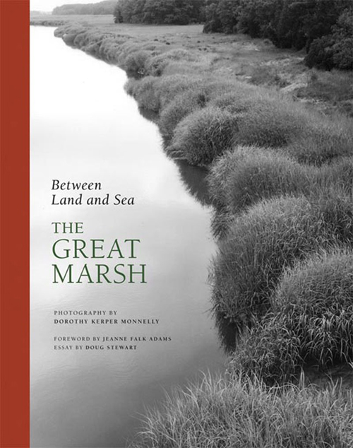 Between Land and Sea: The Great Marsh