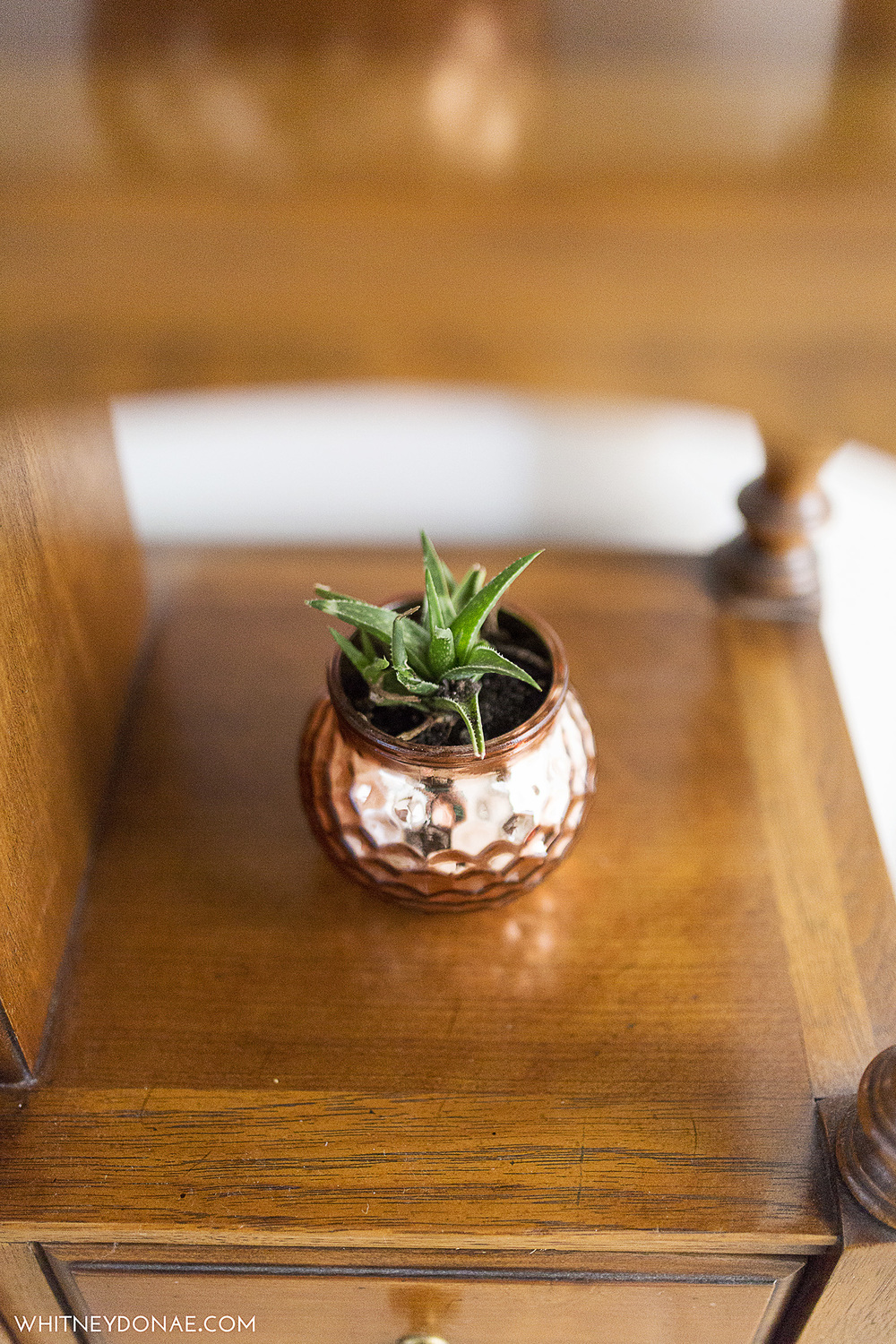 Copper Succulent Planter