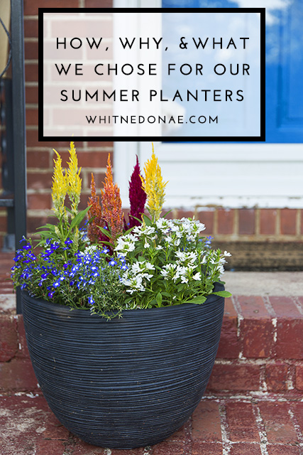 How, Why, & What We Chose To Plant In Our Planters For The Summer
