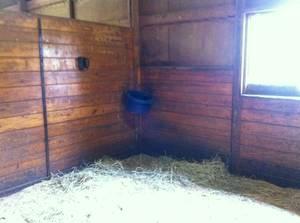 Sample Stall