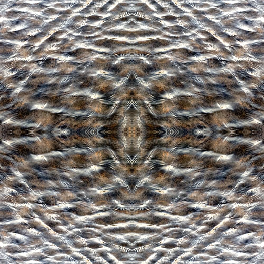 IMG_0215.square.jpg