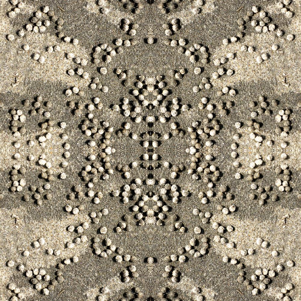 IMG_0242.square.jpg