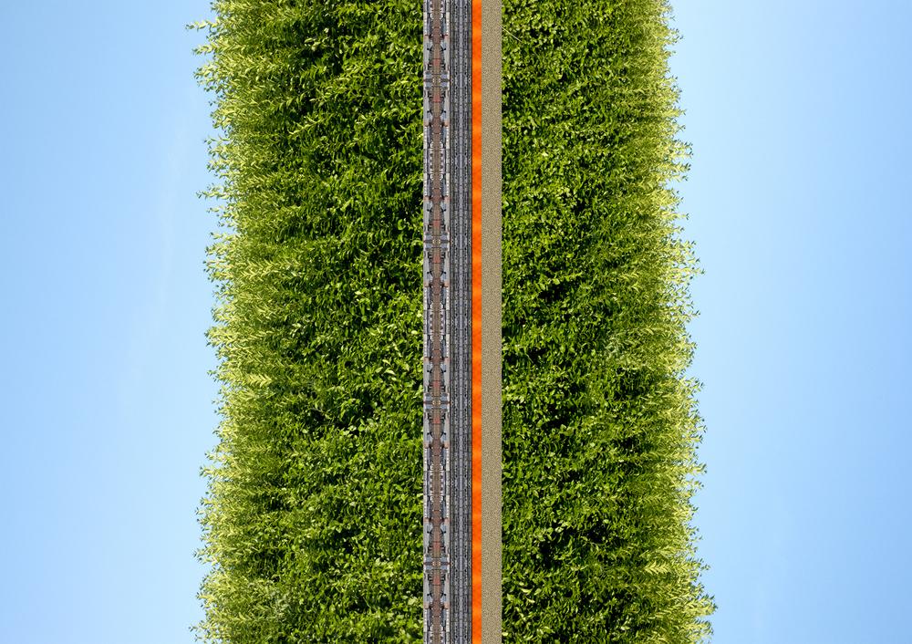 Hedged Inwards, 2014