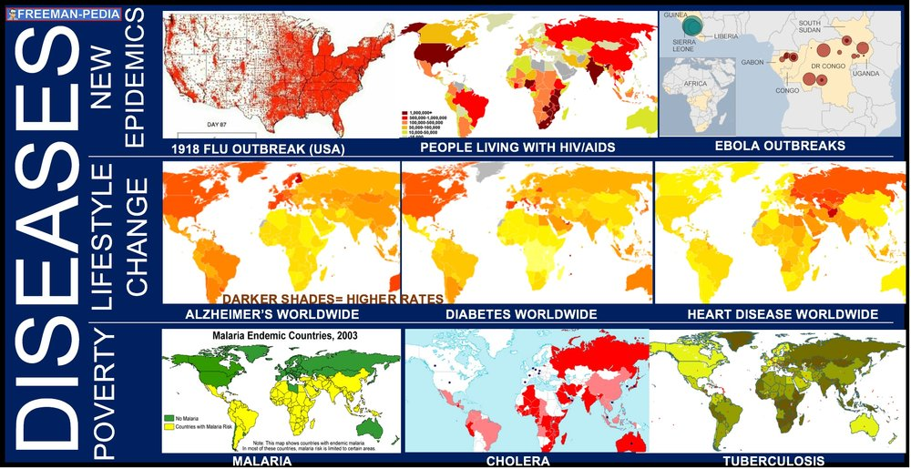 A. Diseases associated with poverty (Malaria, Cholera, Tuberculosis) persisted, while other diseases emerged as new epidemics (1918 Flu, HIV/AIDS, Ebola) and threats to human survival. In addition, changing lifestyles (Diabetes, Heart Disease, Alzheimer's Disease) and increased longevity led to higher incidence of certain diseases.