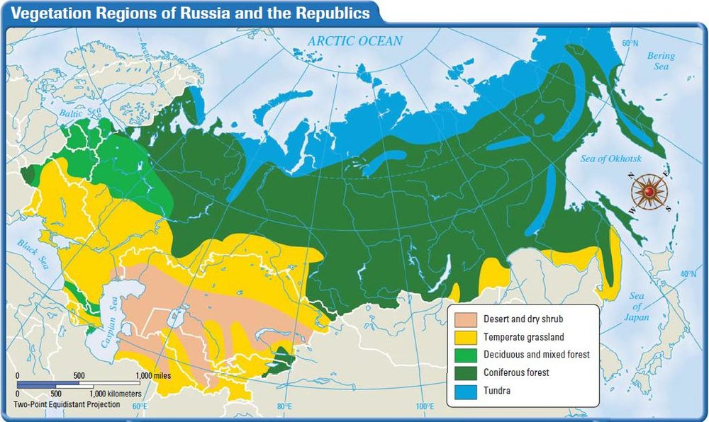 Climate Map of Russia.jpg