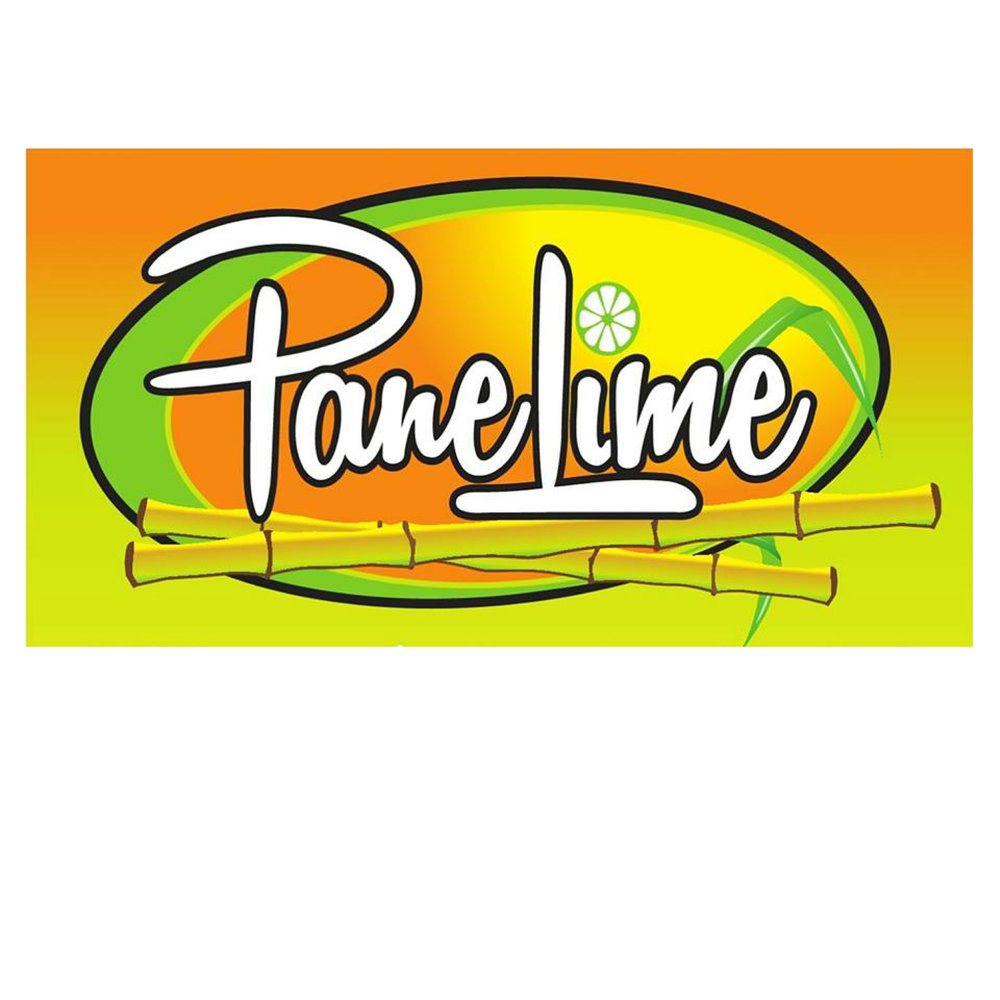 Panelime_logo.jpg