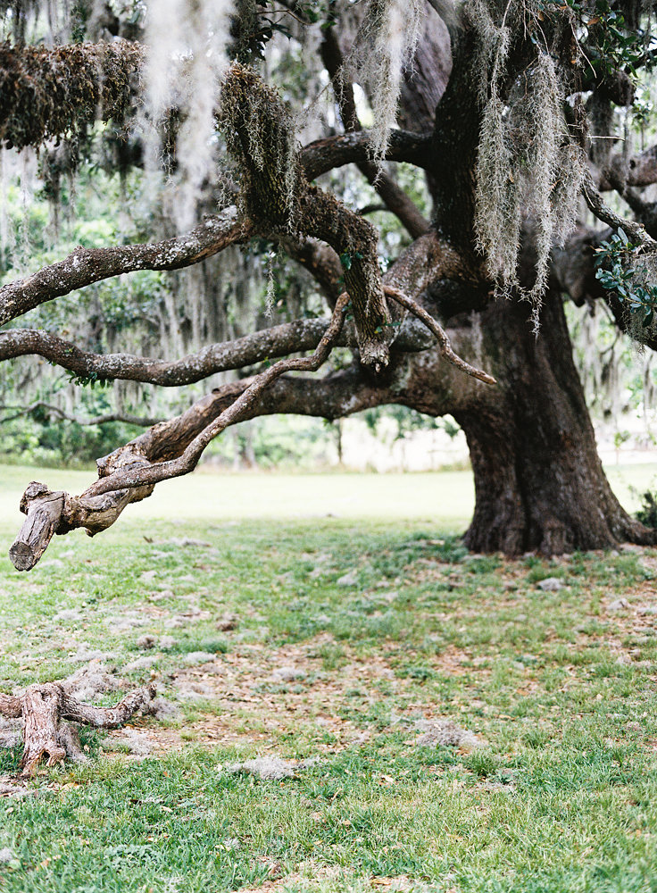 Bayou wedding inspiration
