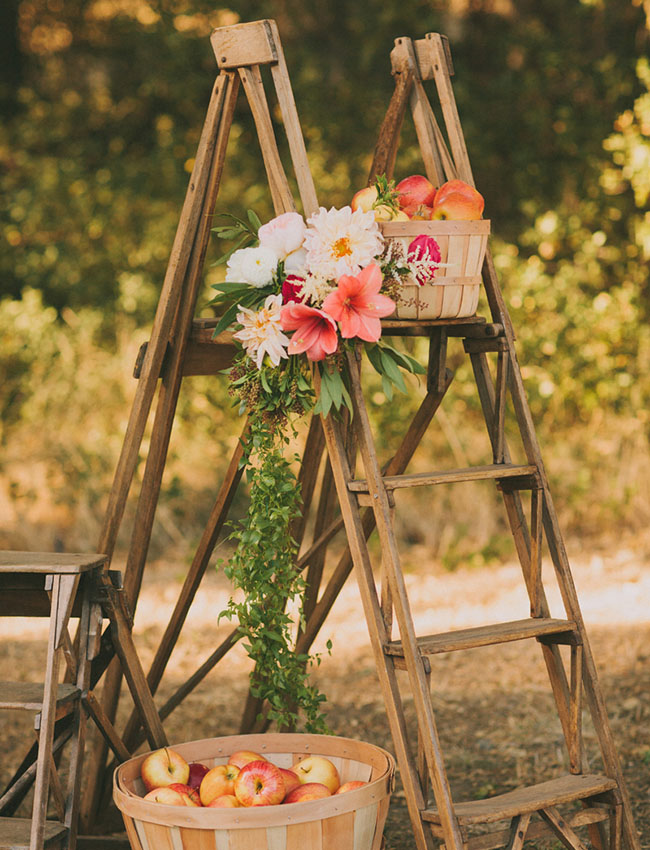 Fall orchard wedding