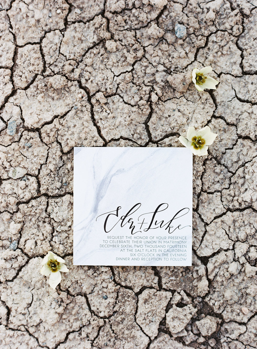 salton sea wedding invitation