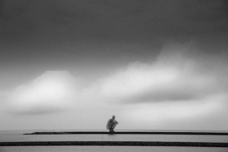 Deze foto heb ik gemaakt in een weekend bij de Oostvaardersplassen, ik geloof bij de Bataviawerf in de buurt. Ik wilde een foto maken die rustgevend zou werken. Toen ik het kunstwerk zag -naar mijn idee een man die zijn leven aan het overdenken is-, paste dit precies bij het beeld dat ik wilde maken. Ik heb daarom gekozen voor een centraalperspectief zonder extra poespas in beeld.