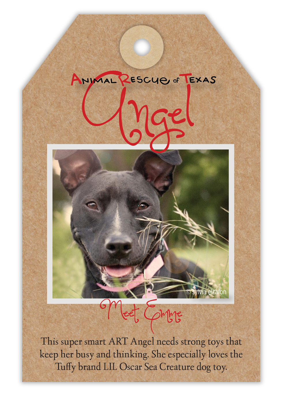 Animal Rescue of Texas Angel Tree Tags - Fosters