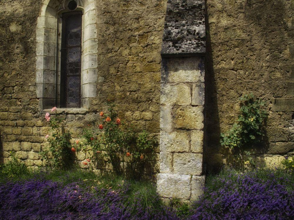 dor lavendar wall.jpg