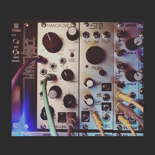 New BFFs. #makenoise #sto  #mannequinsmangrove #eurorack #modularsynth #intellijel #mutableinstruments #formant #producer #noise #losangeles @makenoisemusic @whimsicalraps