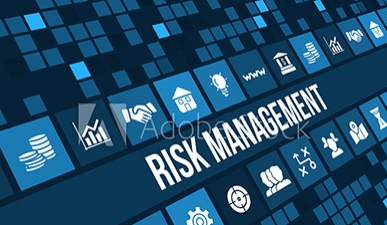 risk mgmt sample image.jpg