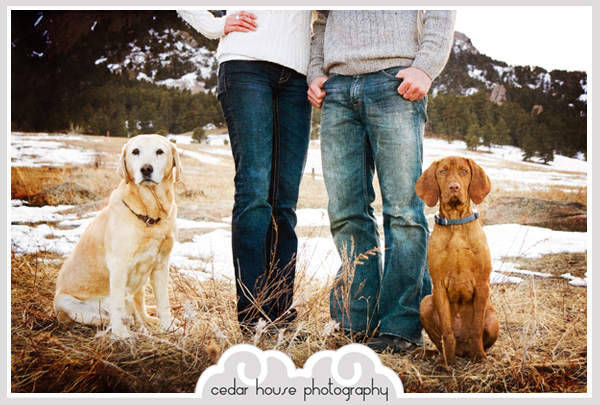 boulder wedding photography, estes park wedding photography, denver wedding photography, buena vista wedding photography, boulder engagement photography, denver engagement photography, colorado springs engagement photography, buena vista engagement photography, estes park engagement photography