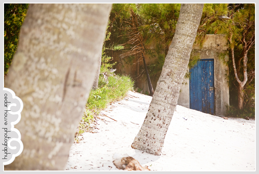 bermuda photographer, bermuda wedding photographer, destination wedding photography, destination wedding photographer