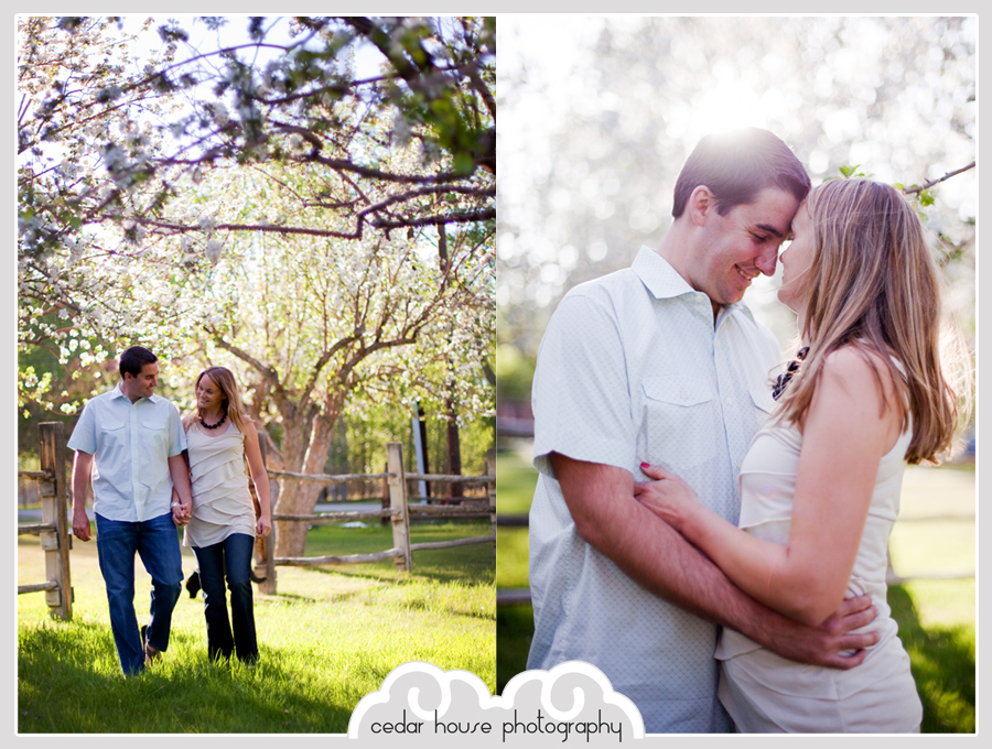 buena vista wedding photographer, salida wedding photographer, leadville wedding photographer, crested butte wedding photographer, breckenridge wedding photographer