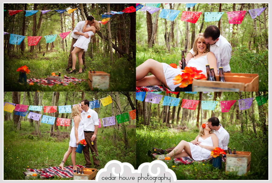 buena vista engagement photographer, salida engagement photographer, breckenridge engagement photographer, aspen engagement photographer, crested butte engagement photographer