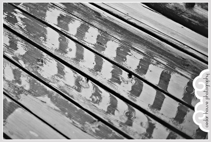buena vista wedding photographer, crested butte wedding photographer, aspen wedding photographer, gunnison wedding photographer, breckenridge wedding photographer, salida wedding photographer, leadville wedding photographer