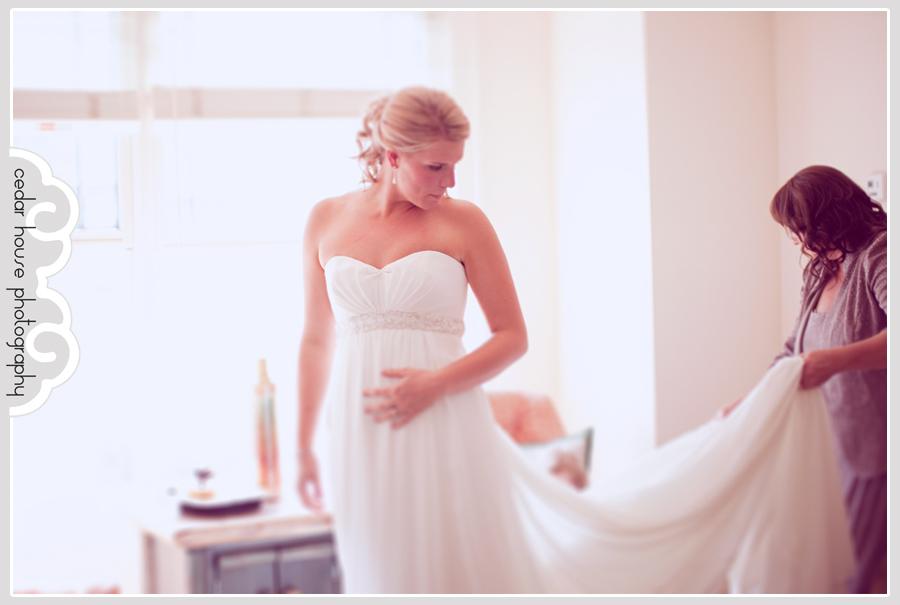 buena vista wedding photographer, telluride wedding photographer, ouray wedding photographer, denver wedding photographer