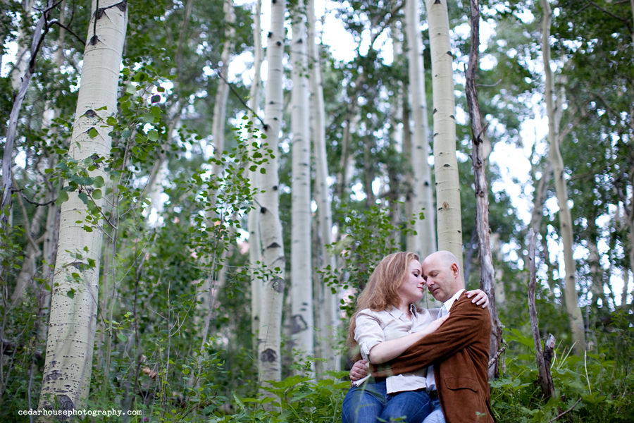 aspen engagement session, aspen engagement photographer, aspen wedding photographer, breckenridge wedding photographer, vail wedding photographer, steamboat wedding photographer, boulder wedding photographer, longmont wedding photographer