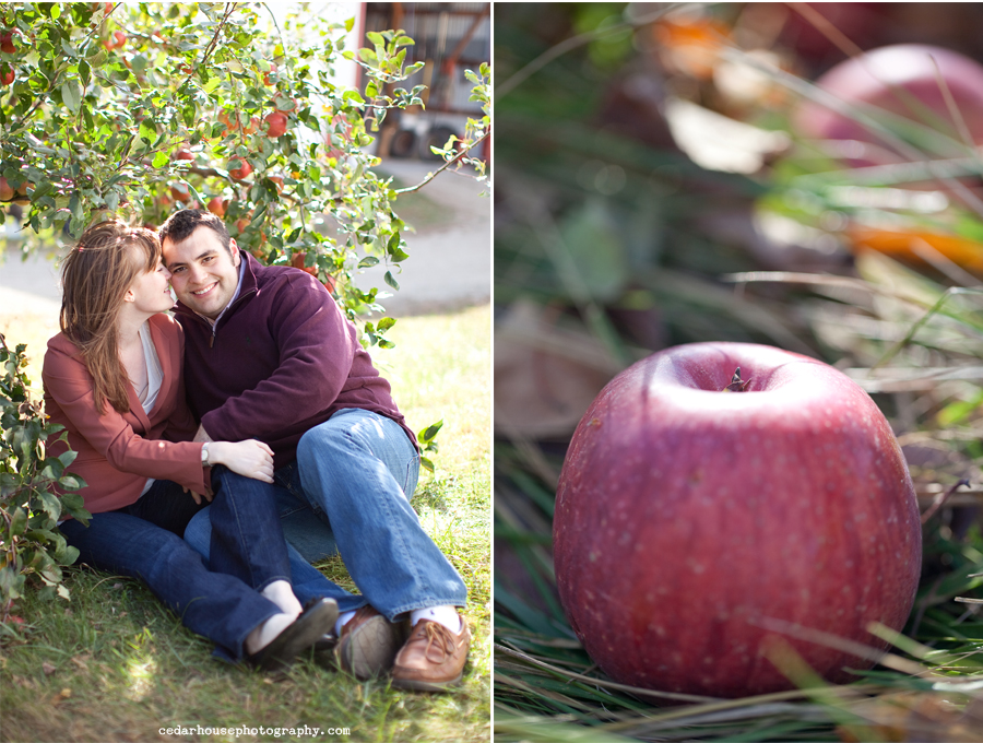 minnesota engagment session, minneapolis engagement photographer, minnesota wedding photographer, minneapolis wedding photographer, colorado wedding photographer, back to school engagement session, colorado engagement photographer, fall engagement session, autumn engagement session