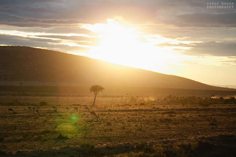 kenya travel photography, safari photography, volunteering in africa