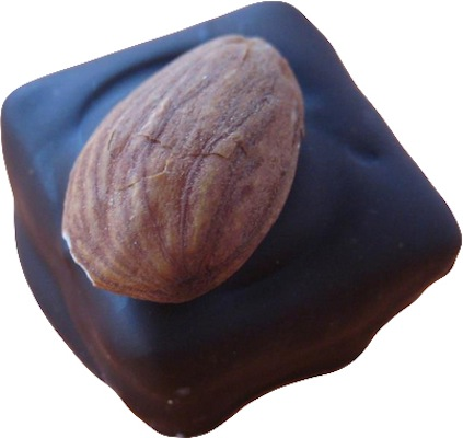 Fig and marzipan in dark chocolate with a perched almond