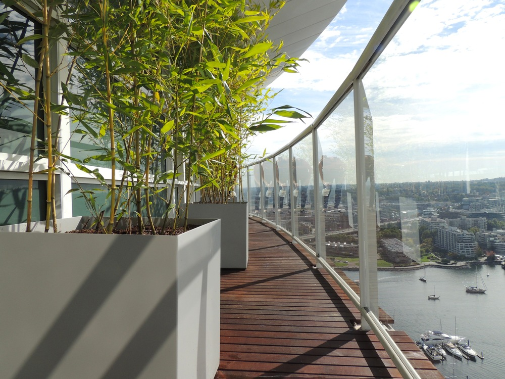 方形的灰色竹子盆景,给温哥华的海湾带来了几分东方神韵。At  Object Outdoors.